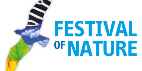 Dinosaurs will take centre stage at Festival of Nature