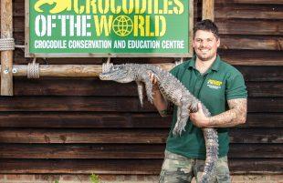 Halloween Fright Fest With Creepy Critters & Crocodiles