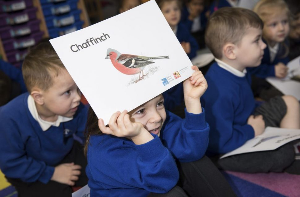 RSPB Big Schools' Birdwatch 2018