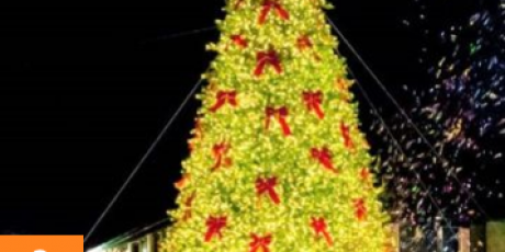 Grand Christmas Light Switch On at Puxton Park