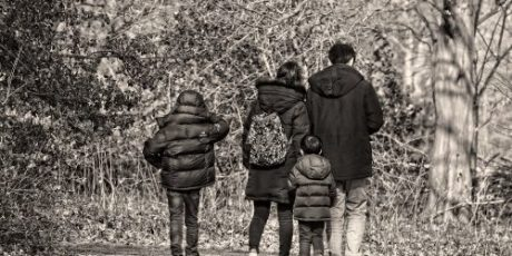 Urgent appeal for more foster carers