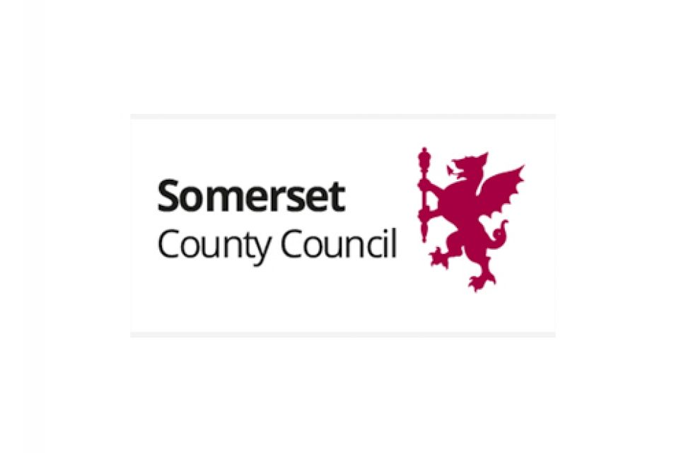 Have fun at home with Somerset libraries
