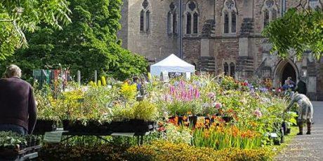 Rare Plant Fair at The Bishop's Palace