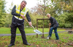 Plant 100,000 trees in Bath & North East Somerset to slow Climate Change