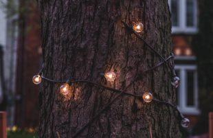 Christmas lights are coming!