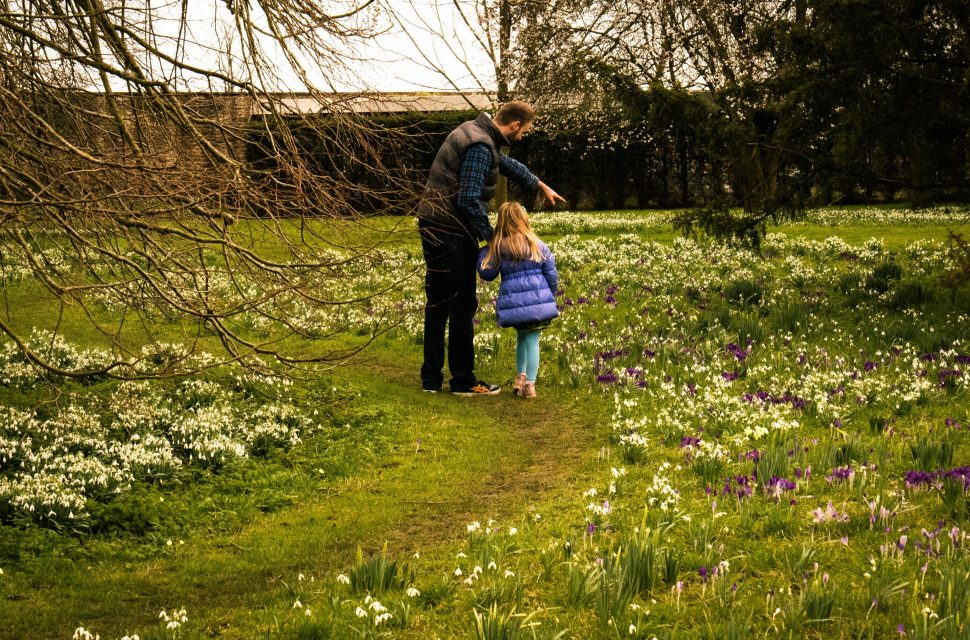 Snowdrop Weekends at The Bishop's Palace