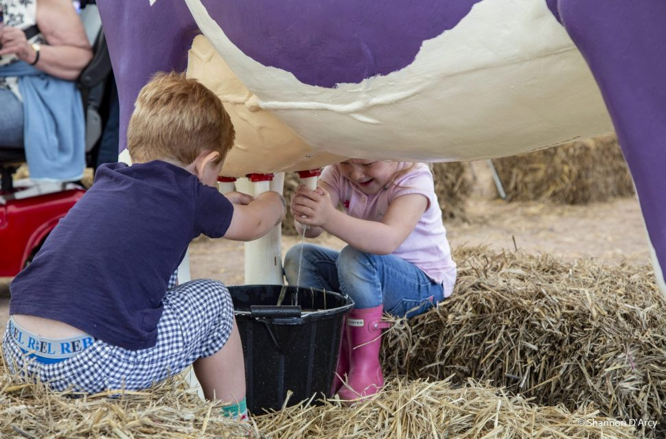 Win a family ticket to The Royal Bath & West Show in August