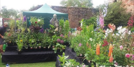 Rare Plant Fair/Mothering Sunday at The Bishop's Palace